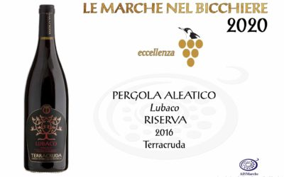 Lubaco, Excellence throughout Marche!