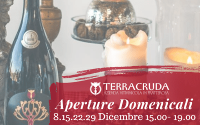 Aperture Domenicali & Hours Month of December!